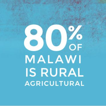 Malawi Agriculture Statistic